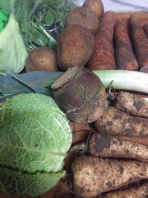 veg box content 12 February 2017 cabbage swede parsnips carrots leeks potatoes salad leaves midorigreen.co.uk