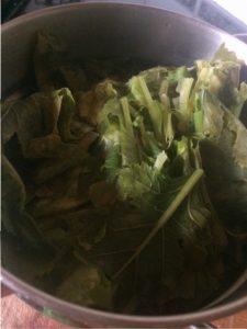 Steamed turnip greens | midorigreen.co.uk